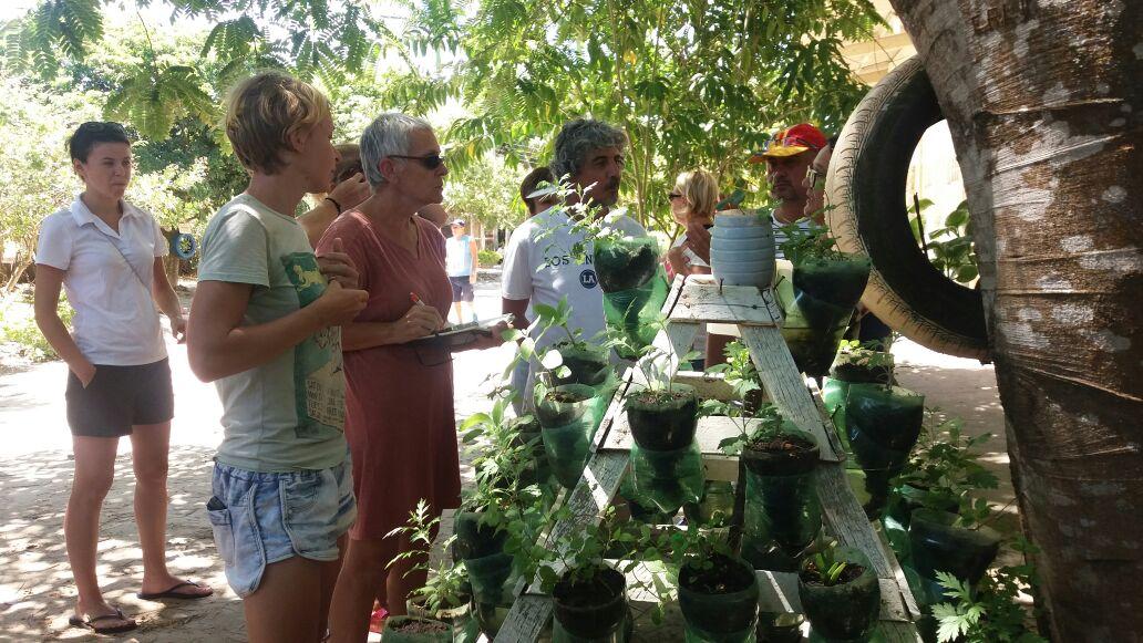 Pesquisadores europeus implantam cultivo monitorado de plantas medicinais na zona rural
