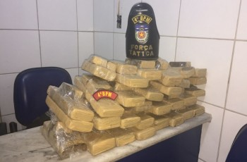 Polícia Militar localiza cerca de 50 kg de maconha enterrada em mata em Maceió