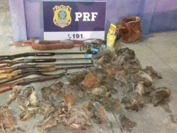 PRF prende quatro pessoas por porte ilegal de armas de fogo e crime ambiental; veja vídeo