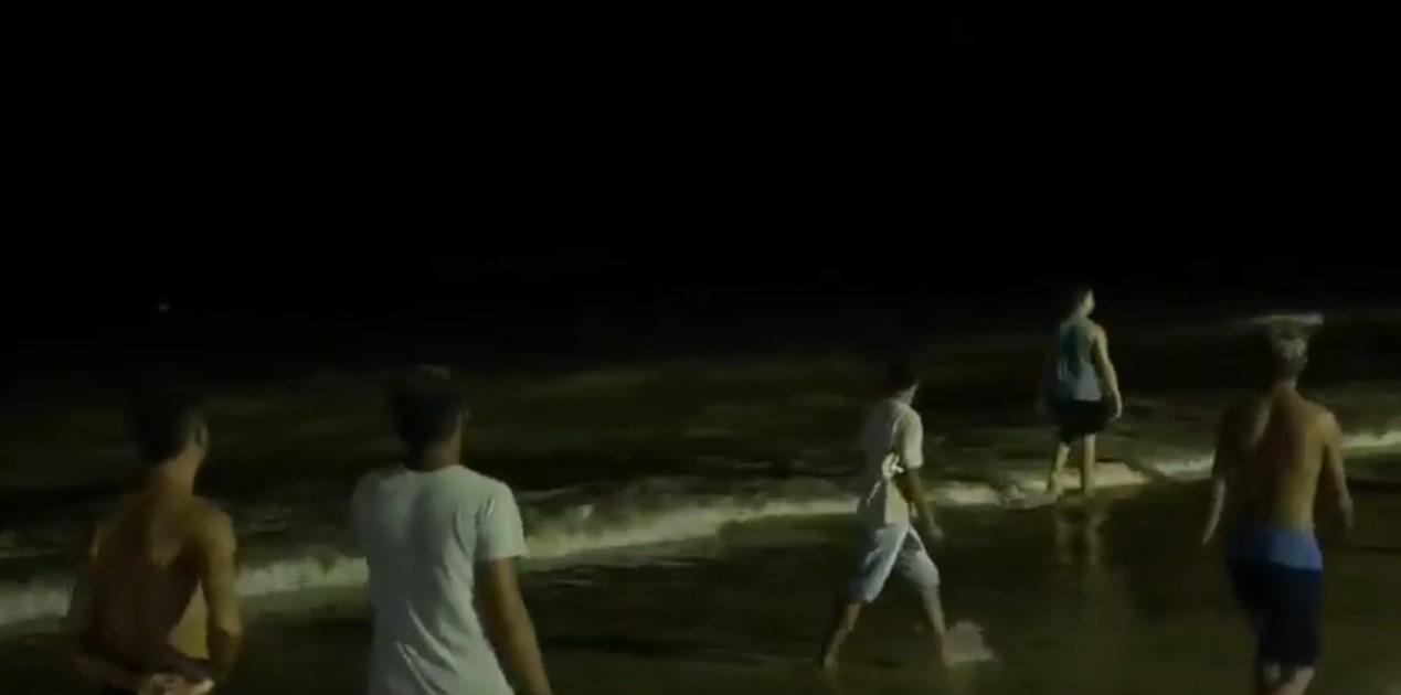 Vídeos: Tubarões são vistos em praia de Maceió