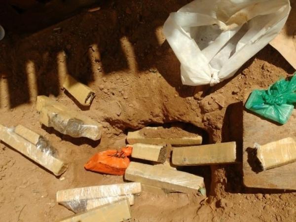 Polícia apreende mais de 8 quilos de maconha enterrada em quintal