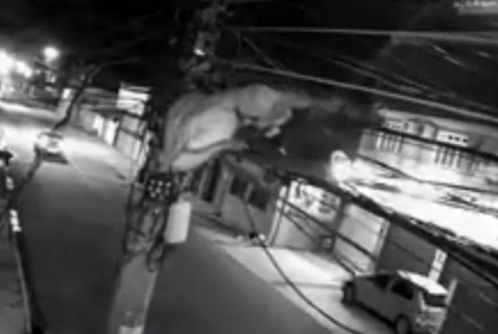 Vídeo: homem escala poste para roubar fios