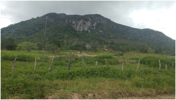 Sertão:Criação de APA da Serra da Caiçara é aprovada pelo Cepram