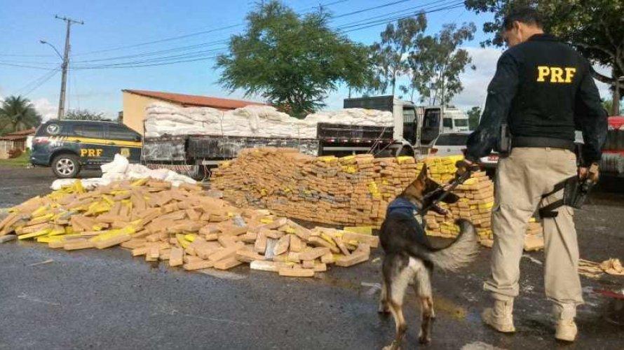 Vídeo: Com ajuda de cão  PRF apreende três toneladas de maconha em caminhão com  carga de farinha na Bahia
