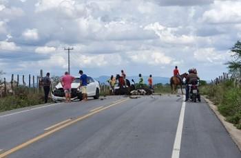 Sertão:Vacas soltas na pista provocam acidente na AL-220; duas morreram