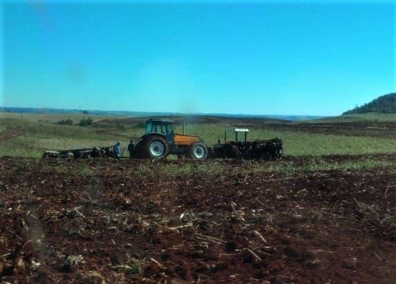 BRASIL: No Paraná, fazendeiros destroem lavouras do MST
