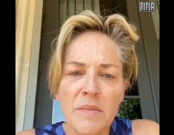 """VÍDEO – Sharon Stone relata as mortes de covid-19 em sua família e denuncia Trump: """"Não vote num assassino"""""""